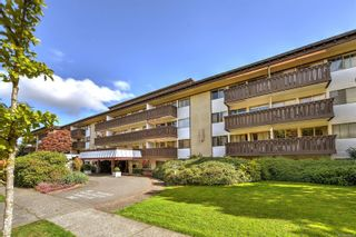 Photo 16: 316 964 Heywood Ave in : Vi Fairfield West Condo for sale (Victoria)  : MLS®# 867328