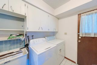Photo 8: 3630 Maitland St in : PA Port Alberni House for sale (Port Alberni)  : MLS®# 883156