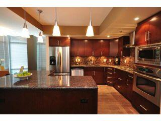 Photo 8: 229 Wellington Crescent in WINNIPEG: Fort Rouge / Crescentwood / Riverview Condominium for sale (South Winnipeg)  : MLS®# 1210819