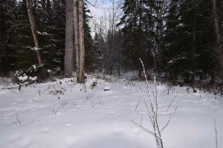 """Photo 19: 3 3000 DAHLIE Road in Smithers: Smithers - Rural Land for sale in """"Mountain Gateway Estates"""" (Smithers And Area (Zone 54))  : MLS®# R2280165"""
