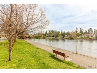 Photo 20: 2835 Rockwell Ave in VICTORIA: SW Gorge House for sale (Saanich West)  : MLS®# 756443