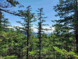 Photo 17: Lot 48 FLINT Road: Keats Island Land for sale (Sunshine Coast)  : MLS®# R2460854