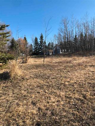 Photo 4: 333 58532 Rge Rd 113: Rural St. Paul County Rural Land/Vacant Lot for sale : MLS®# E4241303