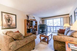 Photo 11: 202 45 FOURTH Street in New Westminster: Downtown NW Condo for sale : MLS®# R2243025