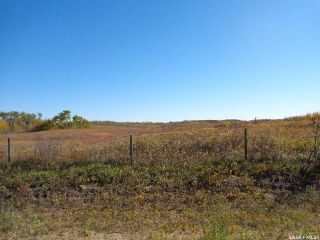 Photo 4: Sidorsky Land SW 24-43-17-W3rd in Battle River: Farm for sale (Battle River Rm No. 438)  : MLS®# SK814834