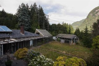 Photo 3: 38290 NORTHRIDGE Drive in Squamish: Hospital Hill House for sale : MLS®# R2285025