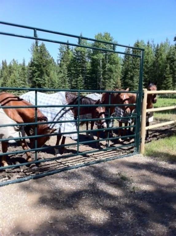 Main Photo: 282155 RANGE ROAD 253: Cochrane Land for sale : MLS®# A1050784
