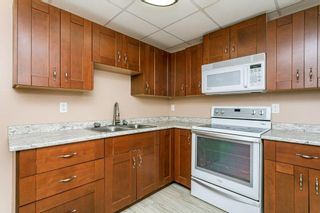 Photo 30: 10540 60A Avenue in Edmonton: Zone 15 House for sale : MLS®# E4265969