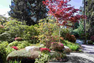 Photo 17: 303 1425 ESQUIMALT Avenue in West Vancouver: Ambleside Condo for sale : MLS®# R2265754