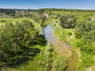 Photo 41: 7116 RANGE ROAD 290 in Rural Pincher Creek No. 9, M.D. of: Rural Pincher Creek M.D. Detached for sale : MLS®# A1136024