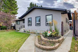 Photo 40: 1351 Idaho Street: Carstairs Detached for sale : MLS®# A1040858