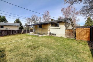 Photo 41: 5107 Forego Avenue SE in Calgary: Forest Heights Detached for sale : MLS®# A1082028