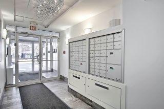 Photo 22: 210 9907 91 Avenue in Edmonton: Zone 15 Condo for sale : MLS®# E4237446