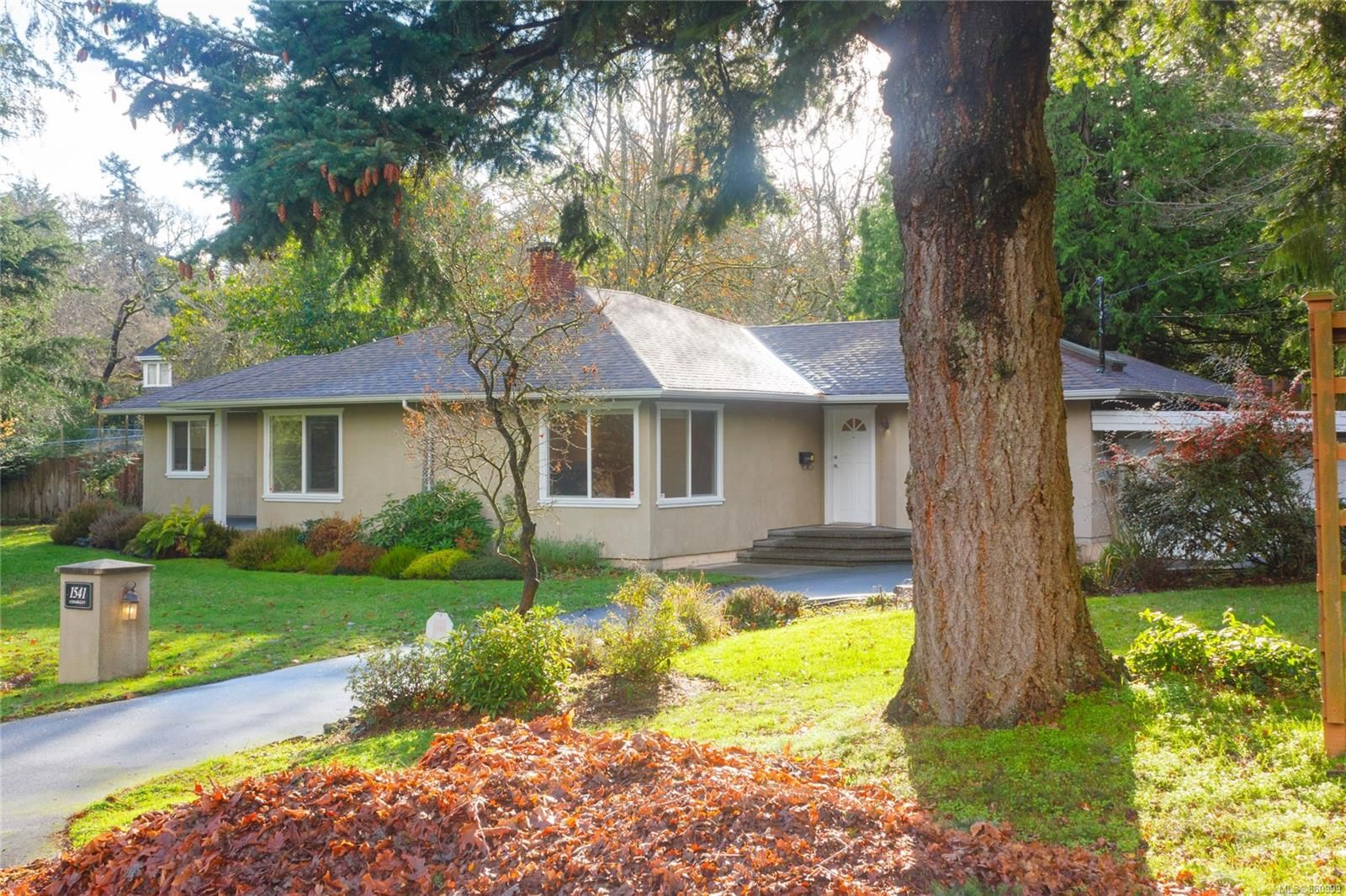 Main Photo: 1541 Cedarglen Rd in : SE Mt Doug House for sale (Saanich East)  : MLS®# 860999