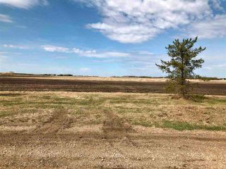 Photo 8: RR 255 & HWY 37: Rural Sturgeon County Rural Land/Vacant Lot for sale : MLS®# E4244134