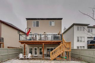 Photo 36: 9 Copperfield Point SE in Calgary: Copperfield Detached for sale : MLS®# A1100718