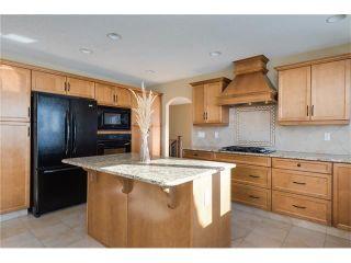 Photo 9: 48142 320 Avenue E: Rural Foothills M.D. House for sale : MLS®# C4098946