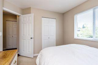 Photo 14: 24083 102 Avenue in Maple Ridge: Albion House for sale : MLS®# R2464748