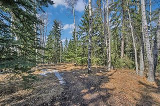 Photo 37: 355047 Range Road 55 Road: Rural Clearwater County Detached for sale : MLS®# A1088773