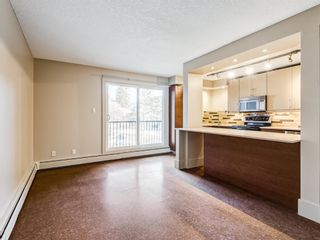 Photo 17: 202 1603 26 Avenue SW in Calgary: South Calgary Apartment for sale : MLS®# A1100163