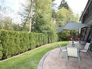Photo 3: 23803 115A Avenue in Maple Ridge: Cottonwood MR House for sale : MLS®# R2003045