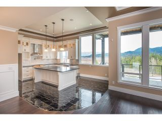 """Photo 50: 22699 136A Avenue in Maple Ridge: Silver Valley House for sale in """"FORMOSA PLATEAU"""" : MLS®# V1053409"""