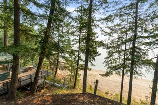 Photo 45: 5420 Sunnybrae Road in Tappen: Sunnybrae House for sale (Shuswap Lake)  : MLS®# 10238040