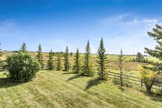Photo 35: 370004 160 Street W: Rural Foothills County Detached for sale : MLS®# A1145850