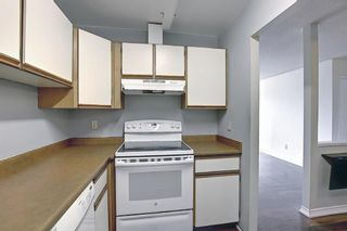 Photo 11: 411 333 Garry Crescent NE in Calgary: Greenview Apartment for sale : MLS®# A1088693