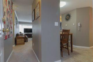 Photo 6: 320 2962 TRETHEWEY STREET in Abbotsford: Abbotsford West Condo for sale : MLS®# R2259674