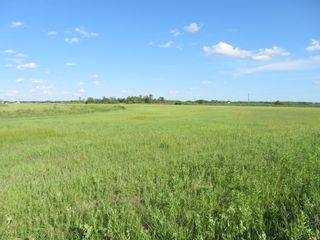 Photo 14: 0 PTH 15 Highway in Dugald: RM Springfield Vacant Land for sale (R04)  : MLS®# 202016001