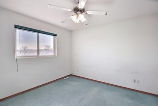 Photo 17: 351 Applewood Drive SE in Calgary: Applewood Park Detached for sale : MLS®# A1094539