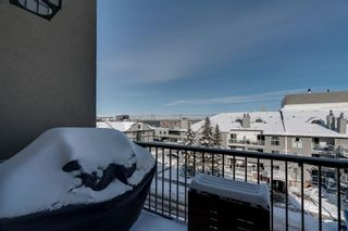 Photo 18: 402 1108 15 Street SW in Calgary: Sunalta Apartment for sale : MLS®# A1068653