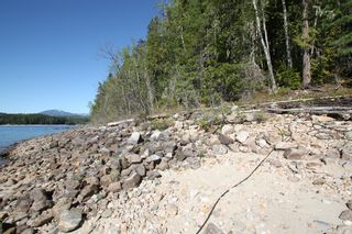 Photo 4: Lot 2 Bradley Road: Seymour Arm Land Only for sale (Shuswap)