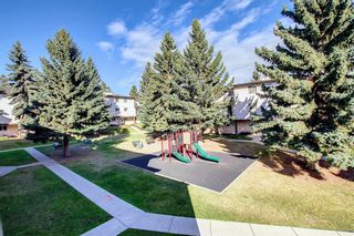 Photo 15: 72 3745 Fonda Way SE in Calgary: Forest Heights Row/Townhouse for sale : MLS®# A1151099