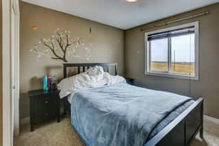 Photo 19: 53 EVANSDALE Landing NW in Calgary: Evanston Detached for sale : MLS®# A1104806