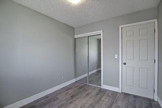 Photo 20: 455 Falconridge Crescent NE in Calgary: Falconridge Detached for sale : MLS®# A1103477