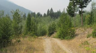 Photo 8: 80 Acres Creighton Valley Road, in Lumby: Vacant Land for sale : MLS®# 10239894