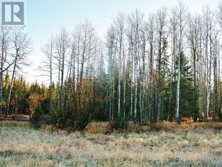 Photo 10: 53018 RANGE RD 175 in Rural Yellowhead County: Vacant Land for sale : MLS®# AW38443