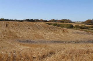 Photo 9: TWP 495 RR 232: Rural Leduc County Rural Land/Vacant Lot for sale : MLS®# E4216268