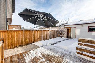 Photo 24: 90 Auburn Bay Manor SE in Calgary: Auburn Bay Detached for sale : MLS®# A1049204