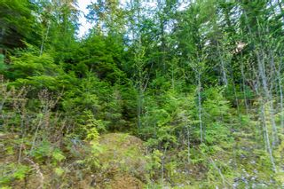 Photo 71: 3,4,6 Armstrong Road in Eagle Bay: Vacant Land for sale : MLS®# 10133907