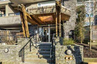 "Photo 19: 203 3150 VINCENT Street in Port Coquitlam: Glenwood PQ Condo for sale in ""BREYERTON"" : MLS®# R2339784"