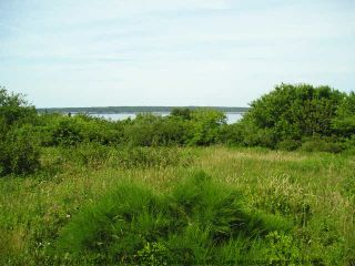 Photo 2: 0 SANDY POINT Road in Shelburne: 407-Shelburne County Vacant Land for sale (South Shore)  : MLS®# 4439593