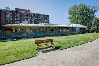 Photo 30: 6 313 13 Avenue SW in Calgary: Beltline Apartment for sale : MLS®# A1141829