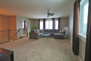 Photo 11: 91 DANFIELD Place: Spruce Grove House for sale : MLS®# E4230123