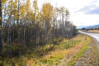 """Photo 5: Lot 5 OLD BABINE LAKE Road in Smithers: Smithers - Rural Land for sale in """"Driftwood"""" (Smithers And Area (Zone 54))  : MLS®# R2625264"""