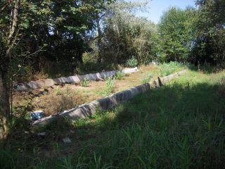 """Photo 11: 34773 BATEMAN Road in Abbotsford: Matsqui House for sale in """"Clayburn Village/Bateman"""" : MLS®# F1321744"""