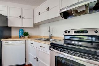 Photo 14: 4128 37 Street in Edmonton: Zone 29 House for sale : MLS®# E4253899