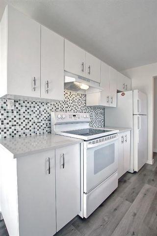 Photo 21: 3036 Doverville Crescent SE in Calgary: Dover Semi Detached for sale : MLS®# A1148570